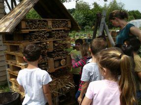 hotel à insecte atelier bois